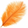 "Ostrich Drab Feathers 6-8"" Premium Quality Golden"